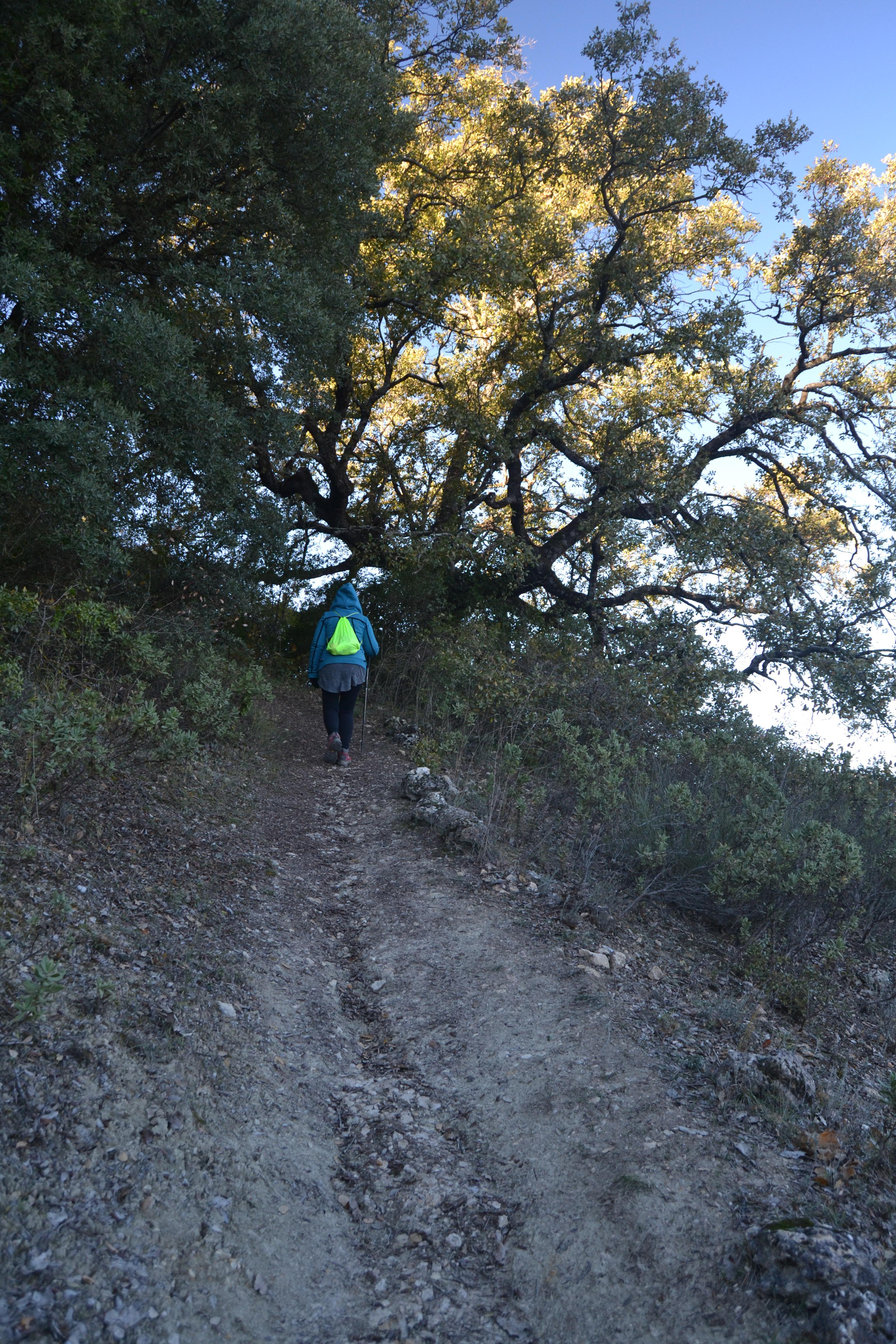 sitio web córneo paseo cerca de Córdoba