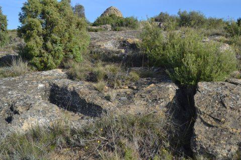 Necrópolis de Perdigón