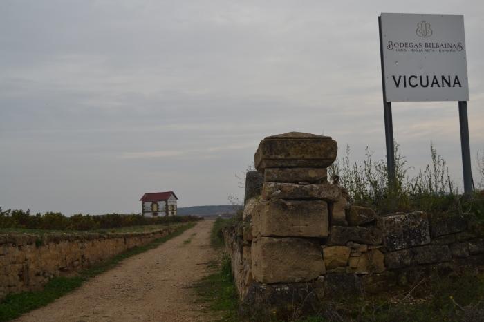 Finca Vicuana