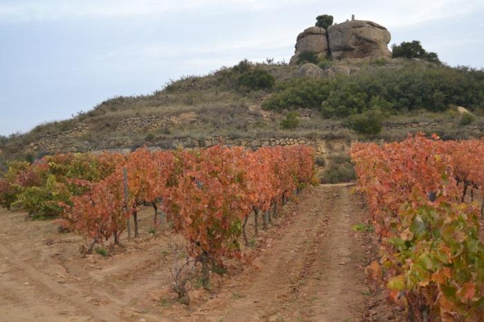 Yeco o Piedra Redonda desde los viñedos