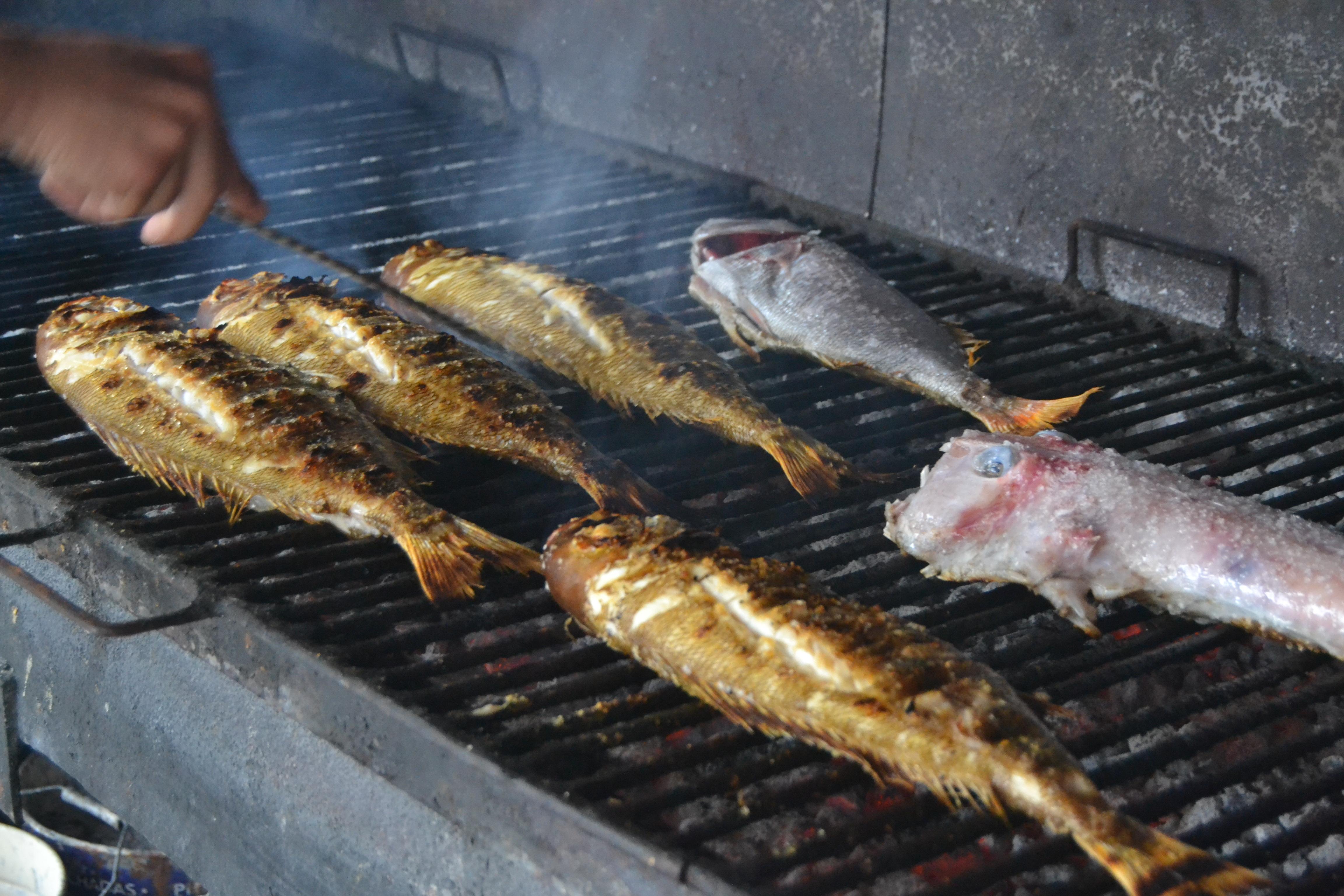 El arte de la parrilla en el bodeg n joxe mari de orio - Parrillas para pescado ...