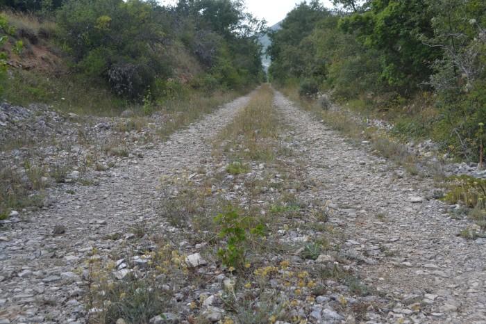 Antiguas vías del tren