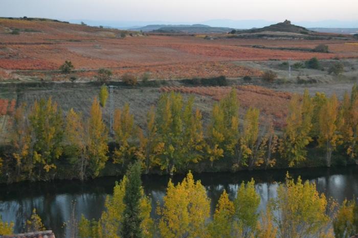 Viñedos, río Ebro y Piedra Redonda o Tondón