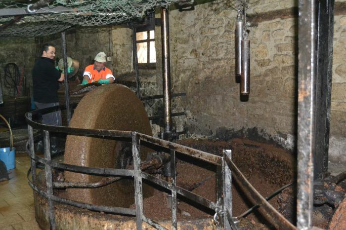 Operarios trabajando en el trujal