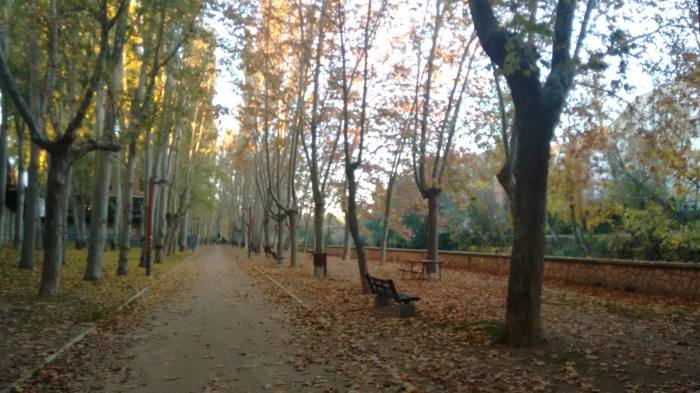 Paseo por la orilla del Duero