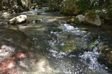 Aguas del río Majaceite