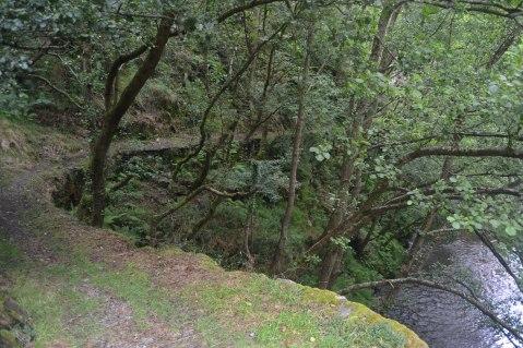 Camino junto al río Esva