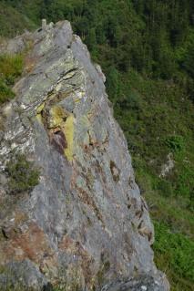 El Pico