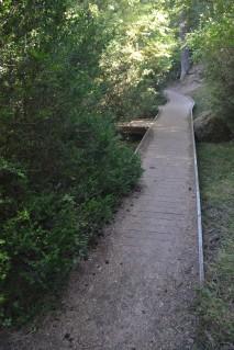 Pasarela junto al río Cuervo