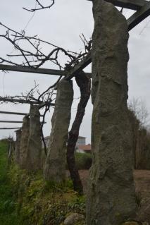 Columnas de piedra del emparrado de vides